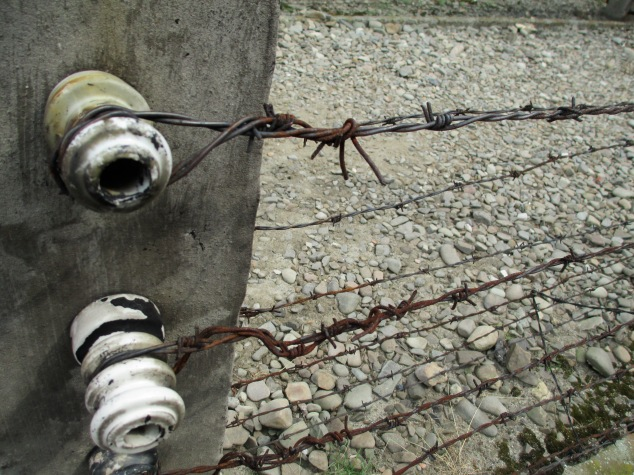 Barbed wire fence in Birkenau (Auschwitz Camp 2), Poland.