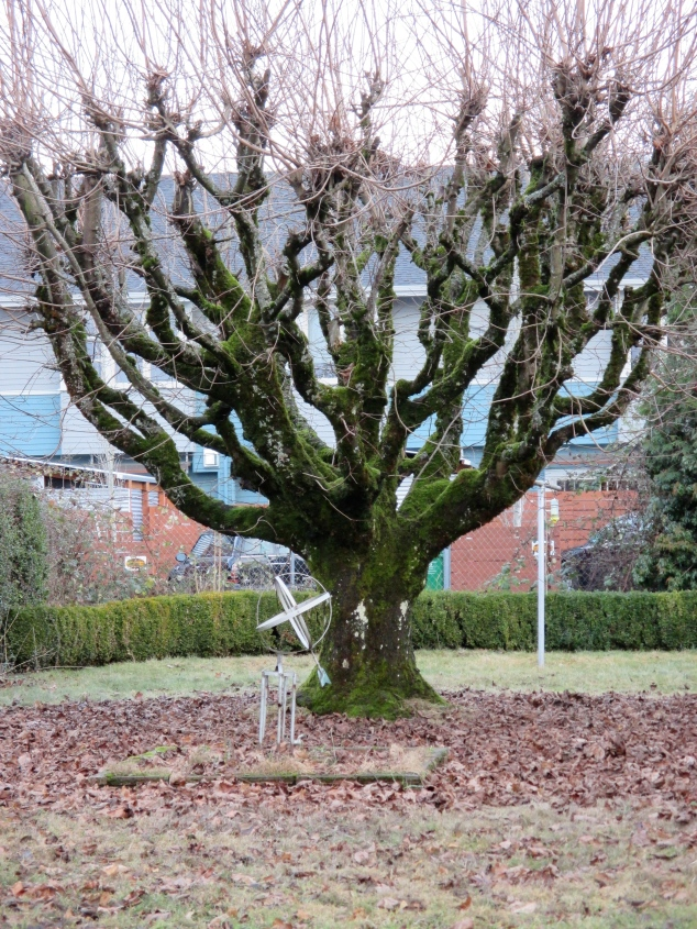 Neat tree